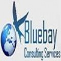 Bluebay Consulting