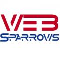 Web Sparrows Solutions Pvt Ltd